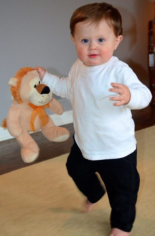 Will walking with lion